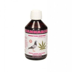 Cannabiol olejek z nasion konopi 250ml