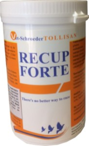 RECUP FORTE 300g